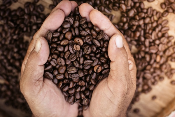 Sabor, color y aroma del café: los secretos de un tueste perfecto